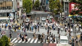 Timelapse sikt över folkmassaen övergångsställe Shibuya Tokyo asiatiskt folk arkivfilmer