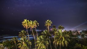 Palms Night Zoom Clouds View Timelapse 4k. Timelapse of some palm trees during the night with the ocean in the background in Sri Lanka. 4k footage stock video footage