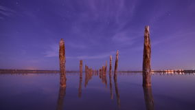 Timelapse of a starry night - water wooden poles stock video