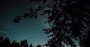 Timelapse of stars over trees at winter night then clouds coming on dark sky. stock footage