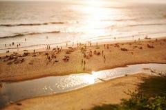 Timelapse-Strand auf dem Indischen Ozean Indien (Neigungsschiebelinse) Stockfotos