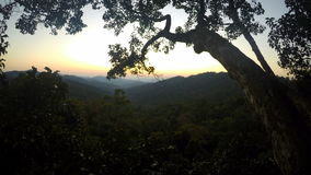 Timelapse of sunset in jungles, Laos stock video