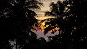 Timelapse of sunset over the roof of the house among the palms. Andreev. Timelapse of sunset over the roof of the house among the palms. Silhouettes of palm stock video