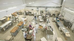 Free Timelapse, The Production Process At The Bread Bakery. Work Process Within 1 Hour. Stock Images - 139194064