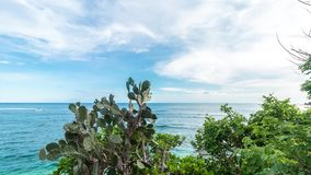 Timelapse of tropical island Bali, Indonesia, Asia. View from the cliff, sunny day, amazing clouds. Cactus on the front. Timelapse of tropical island Bali stock footage