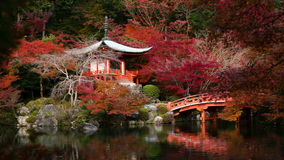 Timelapse van Daigoji-tempel stock video