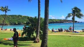 Timelapse van het Hawaiiaanse strand tijdens de dag stock footage