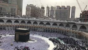 Timelapse van Moslimpelgrims voert middaggebed uit stock footage