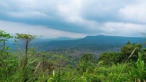 Timelapse van tropisch bos in Zuidoost-Azië thailand Pang Sida stock video