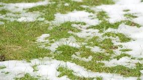 Timelapse-Video des schmelzenden aufschlussreichen grünen Grases des Schnees stock video footage