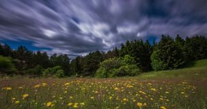 Timelapse video of fast moving clouds in the wild field with flowers stock footage
