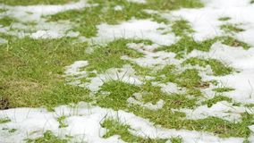 Timelapse video of snow melting revealing green grass. stock video footage