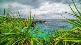 A timelapse view of the rocks and the ocean through the leaves of tropical plants on the island of Nusa Ceningan. 4K Timelapse in Nusa Lembongan and Nusa stock footage