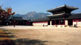 Timelapse of walking visitors at Gyeongbokgung Palace