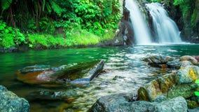 Timelapse Waterfall in deep rain forest jungle in Bali, Indonesia. 4K Timelapse in Bali Island, indonesia stock footage