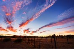 Timelapsed African Sunset Taken In Kgalagadi Royalty Free Stock Photography