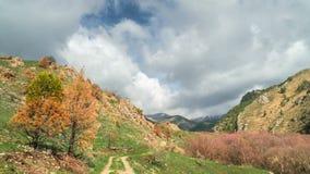 Timelapsemening van mooi landschap in de Alpen met groene weiden en bloeiende oranje bomen en bergbovenkanten in stock video