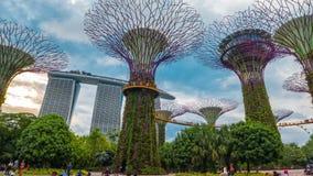 Timelapsemensen in de open plek dichtbij supertrees bij de Tuinen door de Baai Singapore Augustus 2017 stock video