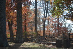 Timeless - Split Rail Fence in Woods. Timeless stability of a split rail fence, looks especially natural amidst the towering trees of autumn Royalty Free Stock Photo