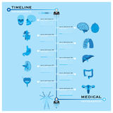 Timeline Health And Medical Infographic Stock Images