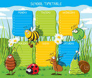 Timetable Insects Stock Images