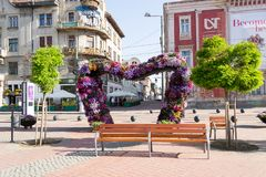 Timfloralis - das Blumen-Festival, Timisoara, Rumänien Stockfotos