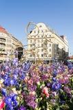 Timfloralis - das Blumen-Festival, Timisoara, Rumänien Stockbilder