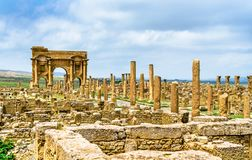 Timgad, ruïnes van een stad roman-Berber in Algerije royalty-vrije stock afbeelding