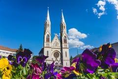 TimiÈ™oara, katolika kościół Obrazy Stock