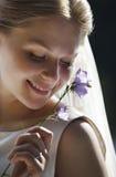 Timid bride Stock Photo