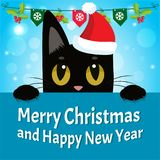 Timid Cat. Happy New Year Card With Cat Vector. Christmas Kitty With Red Santa Hat. Stock Photo