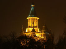 Timisoara de la catedral de Mitropolitan Fotos de archivo libres de regalías