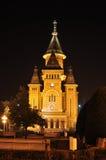 Timisoara katedra Obrazy Royalty Free