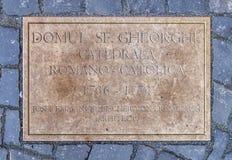TIMISOARA - 15 OKTOBER, 2016 Roman Catholic Episcopal Church i Timisoara, Rumänien Royaltyfri Bild