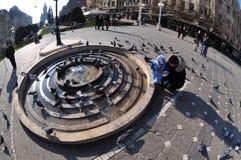 Timisoara Opera Square, Romania Stock Image