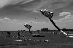 TIMISOARA, ROMANIA- 06.01.20187 Colorful kites fill the sky. Black and white shot. stock photos