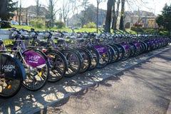 TIMISOARA ROMANIA-03 28 2019 offentliga uthyrnings- cykelsystem Cyklar som anslutas i station royaltyfri fotografi
