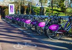 TIMISOARA, ROMANIA-03 28 Sistema de alquiler público de la bicicleta 2019 Bicis atracadas en la estación fotografía de archivo libre de regalías