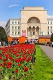 Timisoara, Rumania - del teatro de la ópera el centro de la ciudad adentro de la ciudad Fotos de archivo libres de regalías