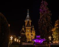 Timisoara - Stadtkathedrale lizenzfreie stockfotos