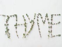 Timjanbladkvistar som bildar ordtimjan över vit bakgrund Royaltyfria Foton