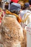 Timket, la célébration orthodoxe éthiopienne de l'épiphanie Photographie stock libre de droits