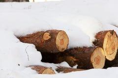 timmar liggandesäsongvinter snow Arkivbilder