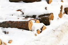 timmar liggandesäsongvinter snow Fotografering för Bildbyråer