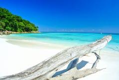 Timmer bredvid det blåa havet med blå himmel på den Tachai ön Thailan Royaltyfri Fotografi