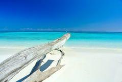 Timmer bredvid det blåa havet med blå himmel på den Tachai ön Thailan Royaltyfria Bilder