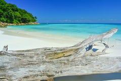 Timmer bredvid det blåa havet med blå himmel på den Tachai ön Thailan Arkivfoto