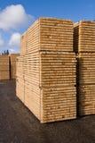 Timmerhout en hout Stock Afbeeldingen
