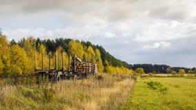 Timmerlastbilen med loggar in skogvägen Arkivbilder