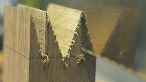 Timmerman die een houten spatie met een Japanse zaag zagen stock video